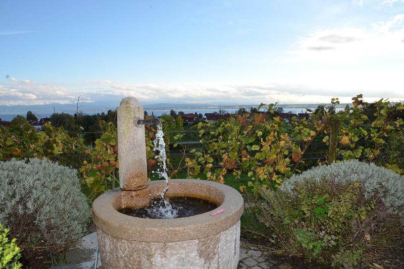 Brunnen-beim-Gästehaus-der-Pallottiner-Schloss-Hersberg-am-Bodensee