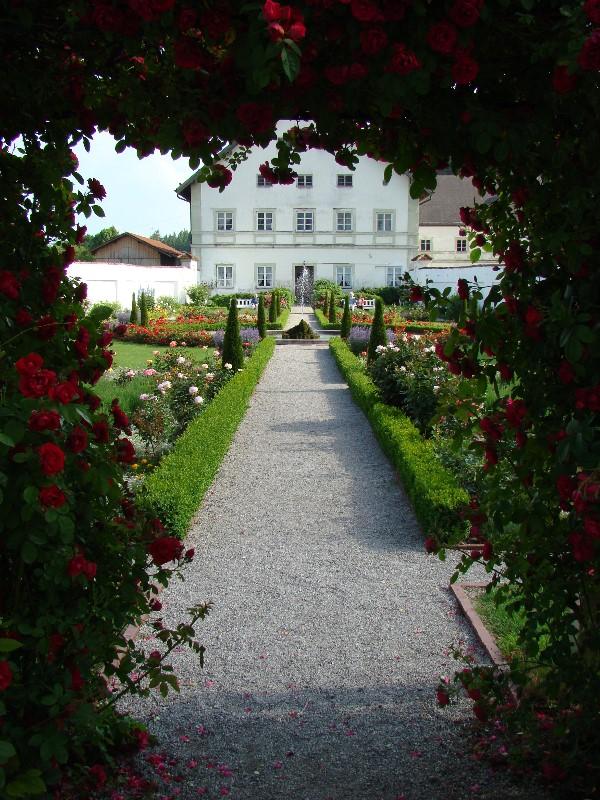 Prälatengarten-Rosenbogen