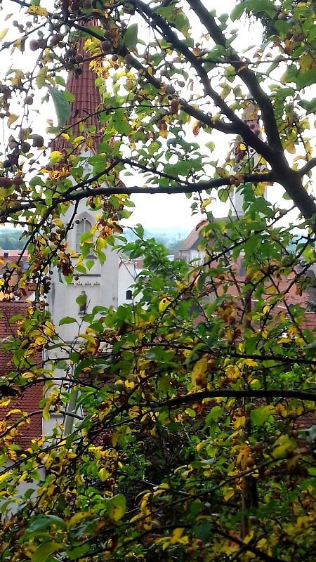Bilder zu: Klosterberggarten